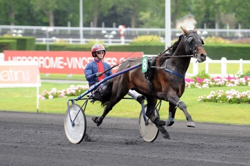 09/06/2012 VINCENNES;PARIS PRIX LOUIS JARIEL - G2 MOULIN Philippe ;DUBOIS Julien;ECURIE VICTORIA DREAMS TEXAS CHARM | 120609lolo00205 056092_003