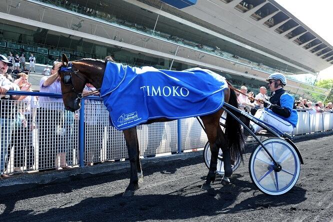 Timoko, Prix de Bourgogne