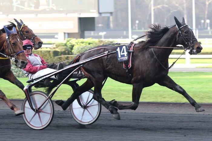Ready Cash Prix du Bourbonnais